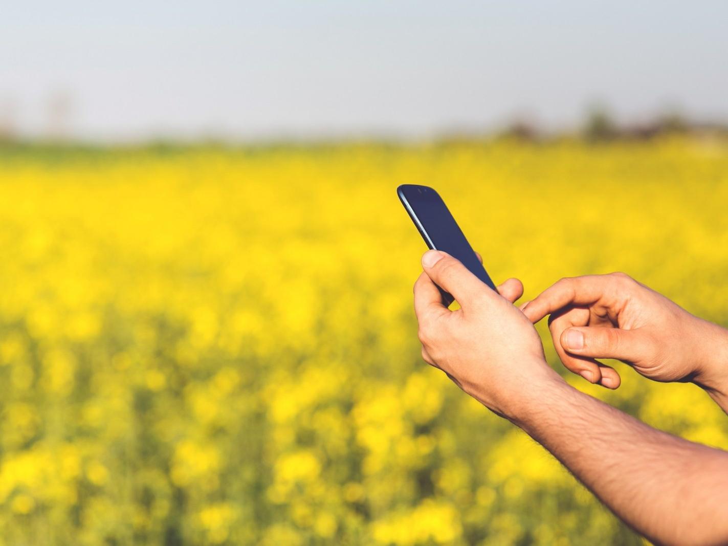 生鮮電商爭霸戰》解析生鮮產業鏈關鍵點