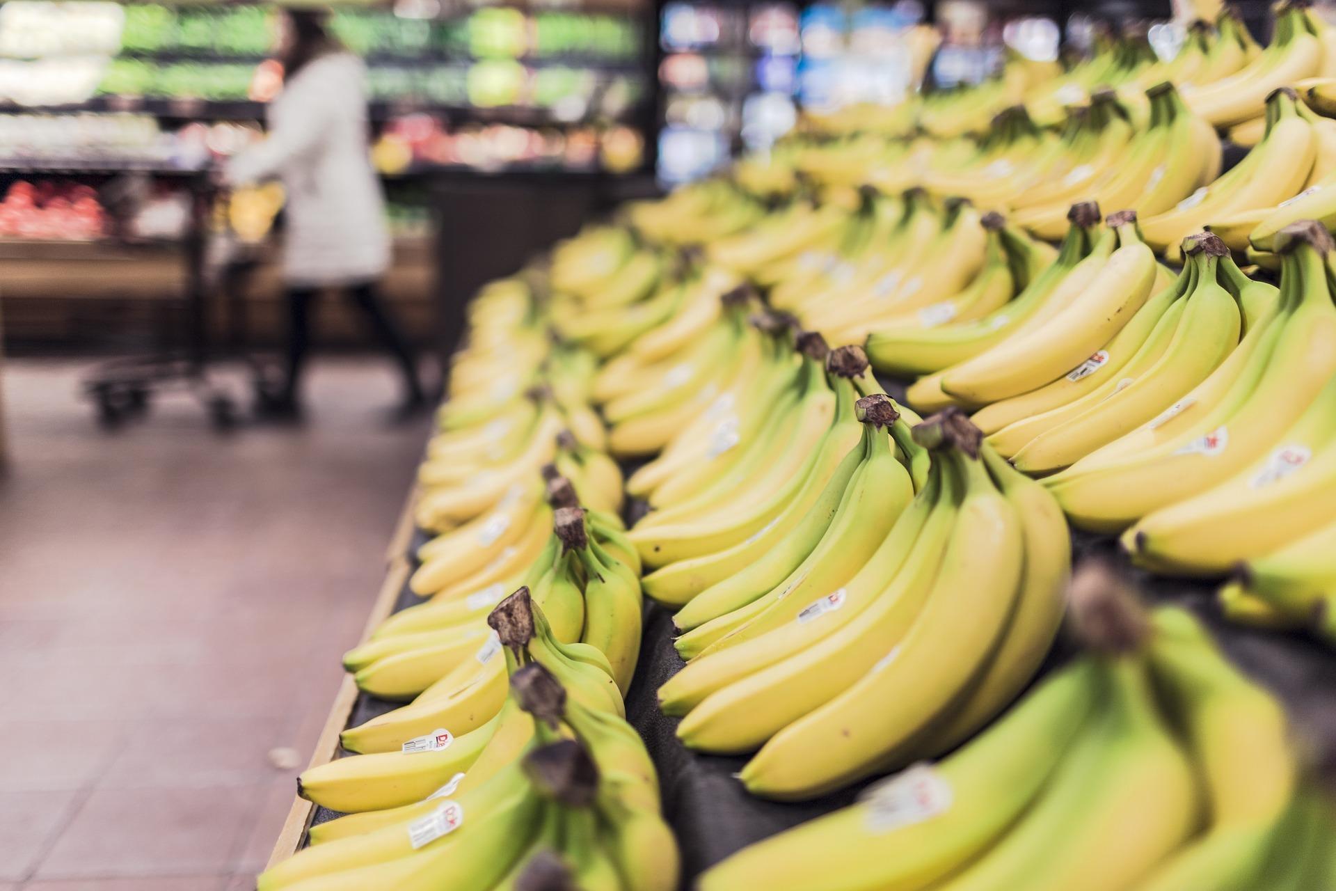力抗網購低價競爭困境,阿里巴巴反向發展實體雜貨商店