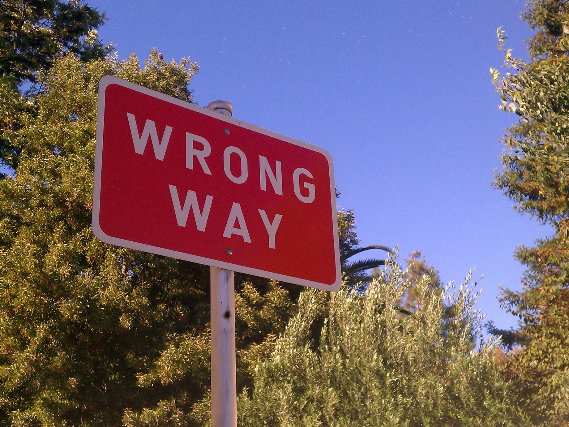 如何提升社群廣告投資報酬率?5個常見失誤,你犯了哪一個?